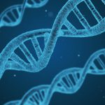 The DNA of Medicare Fraud & the False Claims Act